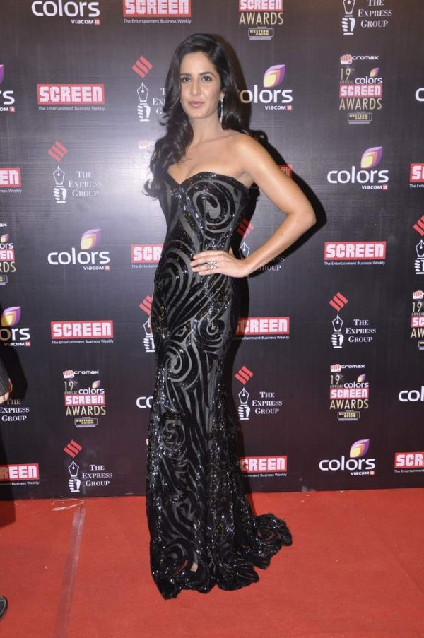 Katrina kaif in star screen awards 2013